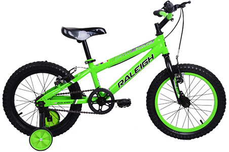 "Enduro 16"" Boys BMX"