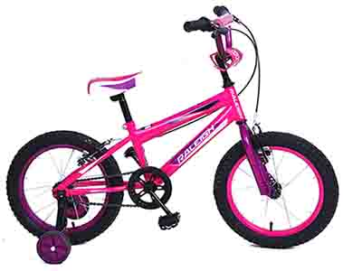 "ROWDY 16"" Girls BMX"