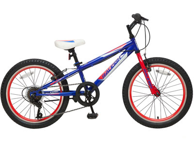"Tracer 20"" Boys Mountain bike"