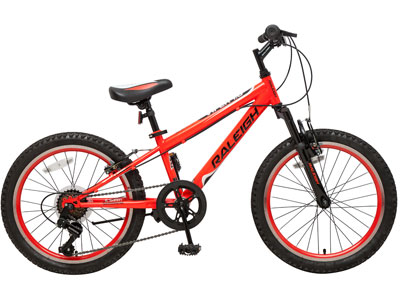 "Viper 20"" Boys Mountain bike"