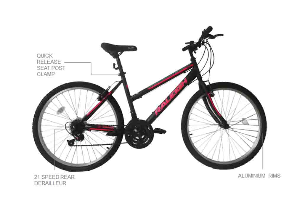 "Nexus 24"" Mountain Bicycle"